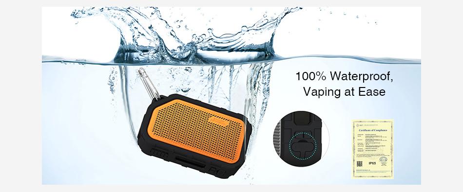 WISMEC Active Bluetooth Music TC Box MOD 2100mAh vapexperts 3