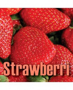 T-Juice_Flavor_Diy_Strawberri_Vapexperts